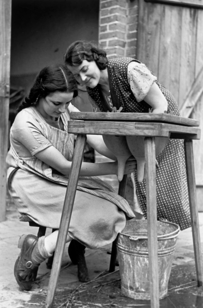 Two girls practice at a milking table with an artificial udder in the Hachschara camp Steckelsdorf near Rathenow, 1937 Settlers with agricultural know-how are in demand in Palestine. Many Latin American destination countries also only accept newcomers with experience in trades and agriculture. For this reason, both Zionist and non-Zionist Jewish organizations support training farms and centers where young people in particular can prepare for lives in exile. Photo: Herbert Sonnenfeld / Jüdisches Museum Berlin